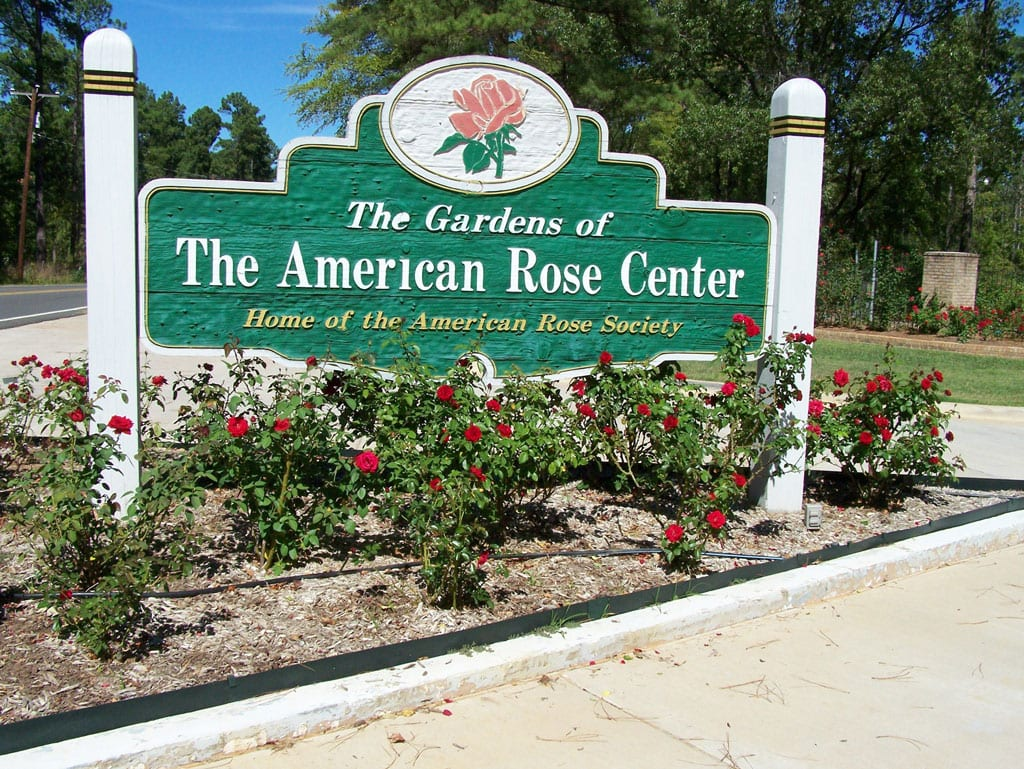 Gardens Of The American Rose Center Opens Today Bossier