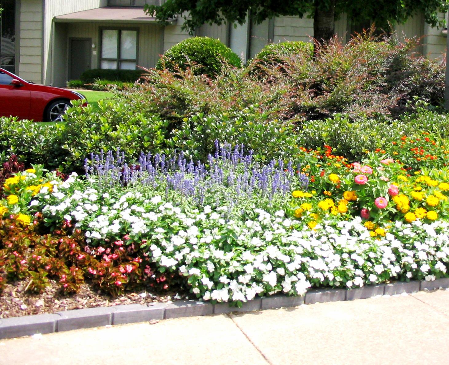 Planting your summer flower garden | Bossier Press-Tribune